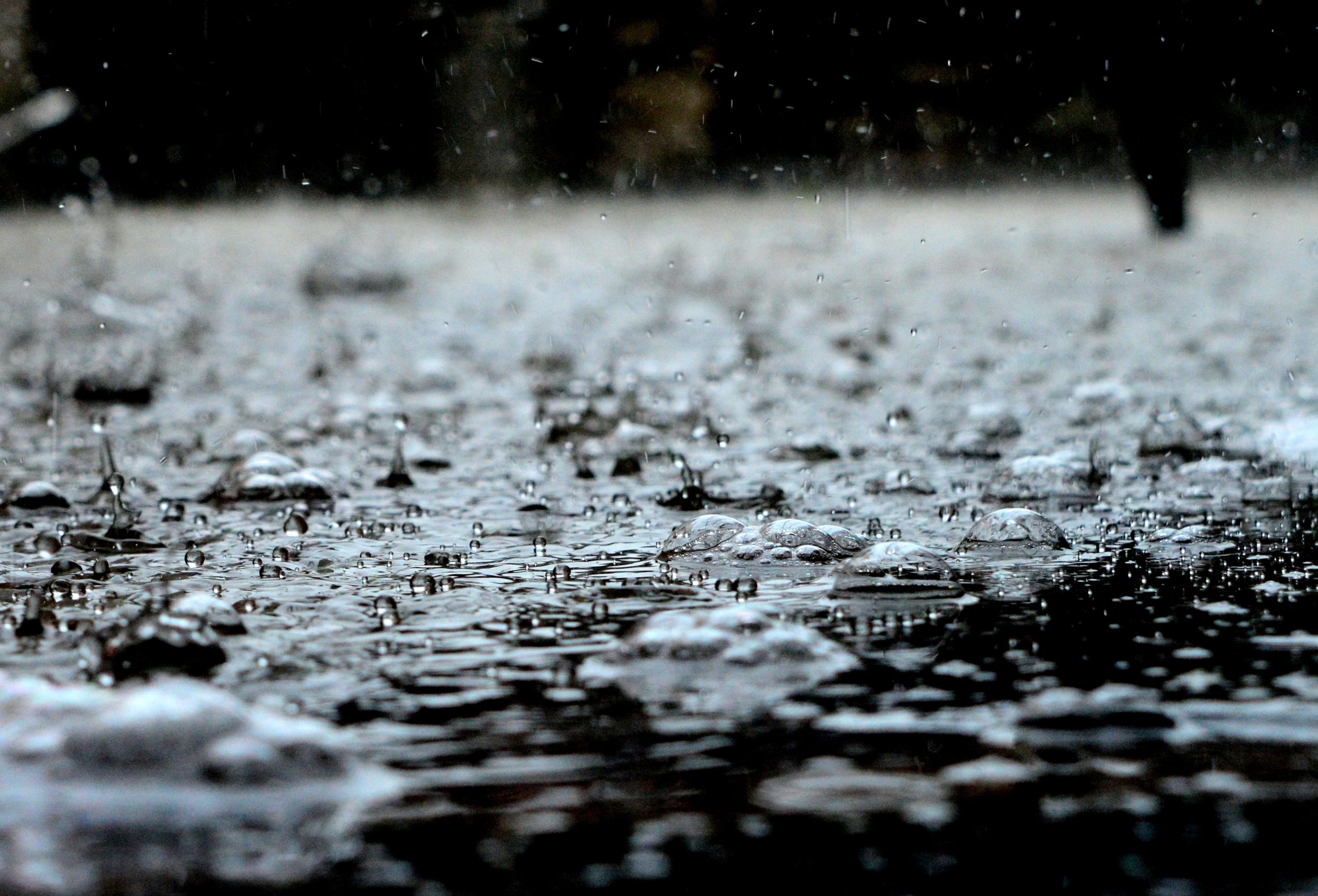 BEST PRECAUTIONARY MEASURES TO TAKE IN RAINFALL